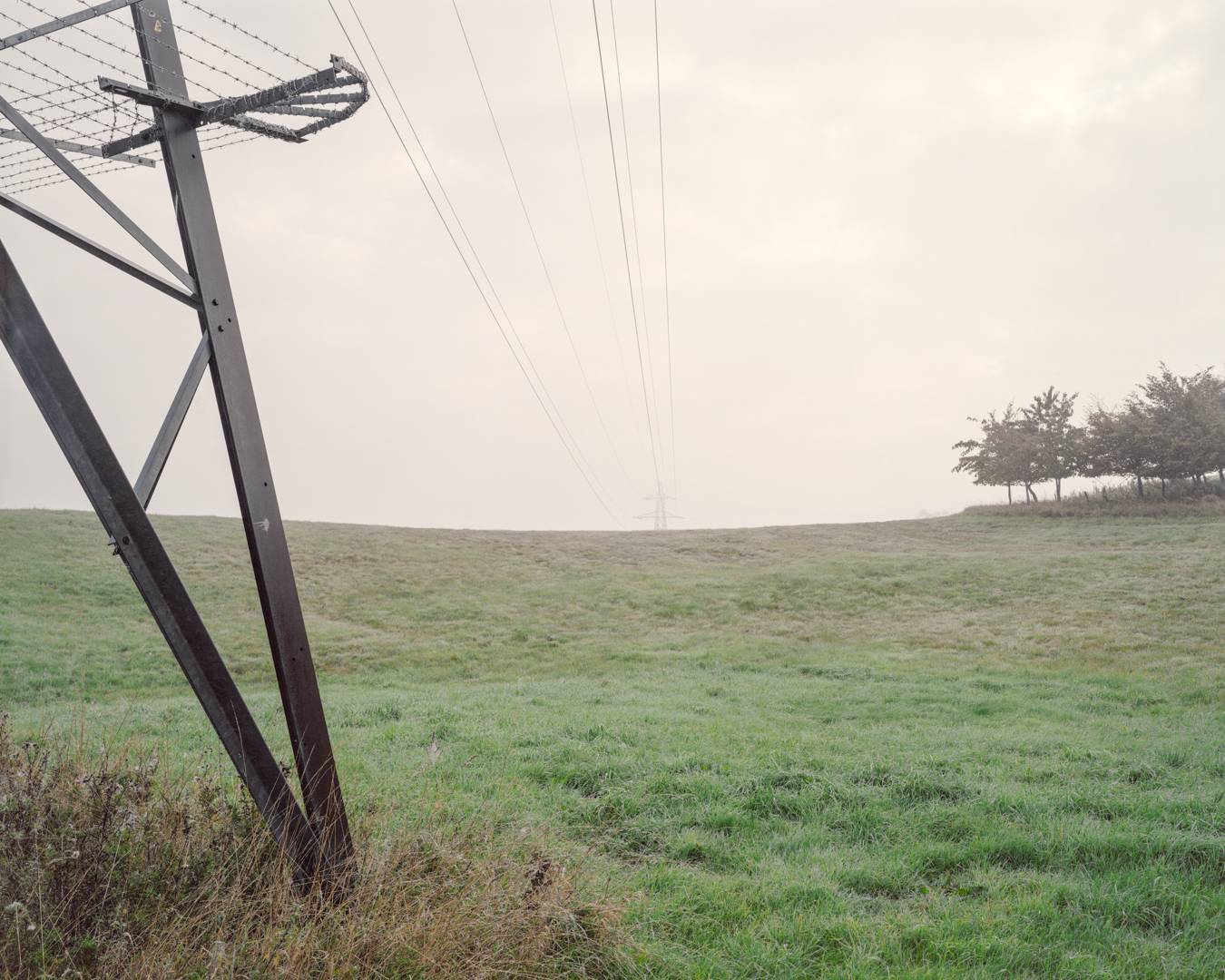 Parkland behind Industrial Estate, Lydiard Tregoze 2015