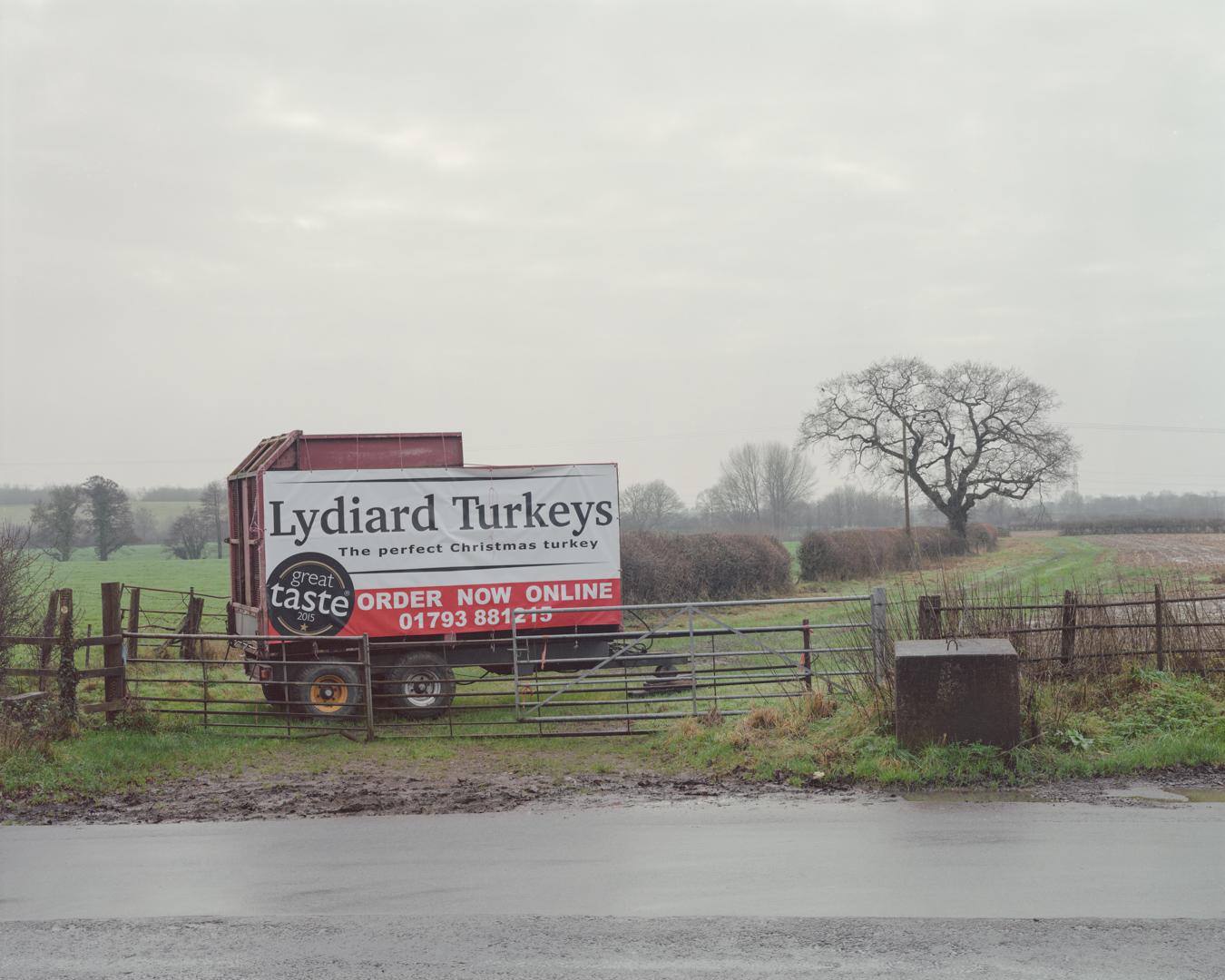 Turkey Farm, Lydiard Tregoze, 2015